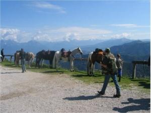 Trekking a cavallo tra le Prealpi Trevigiane